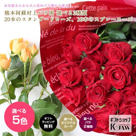 【FA-01】熊本阿蘇村上バラ園 2種類、どちらか選べるバラのギフト