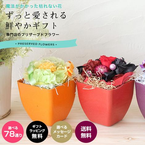 【PR-34】プリザーブドフラワー ギフト花鉢