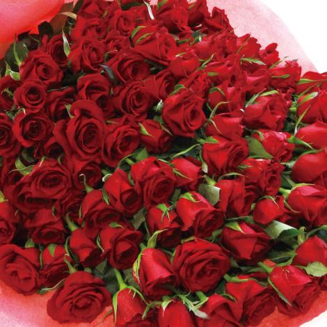 【R-01】100本特別割引 4色から選ぶバラの花束