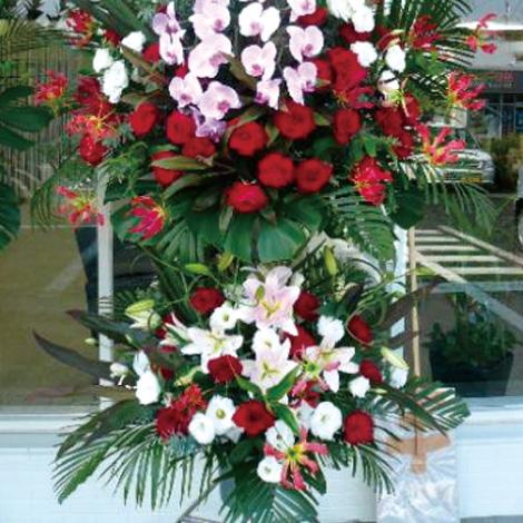 胡蝶蘭スタンド花イメージ