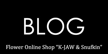 K-JAW BLOG