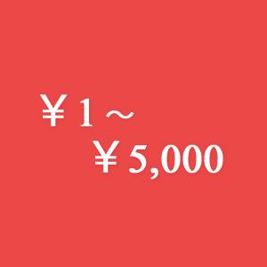 ~¥5,000