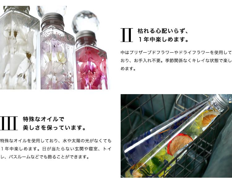 ハーバリウム&サンキャッチャー 商品の特徴